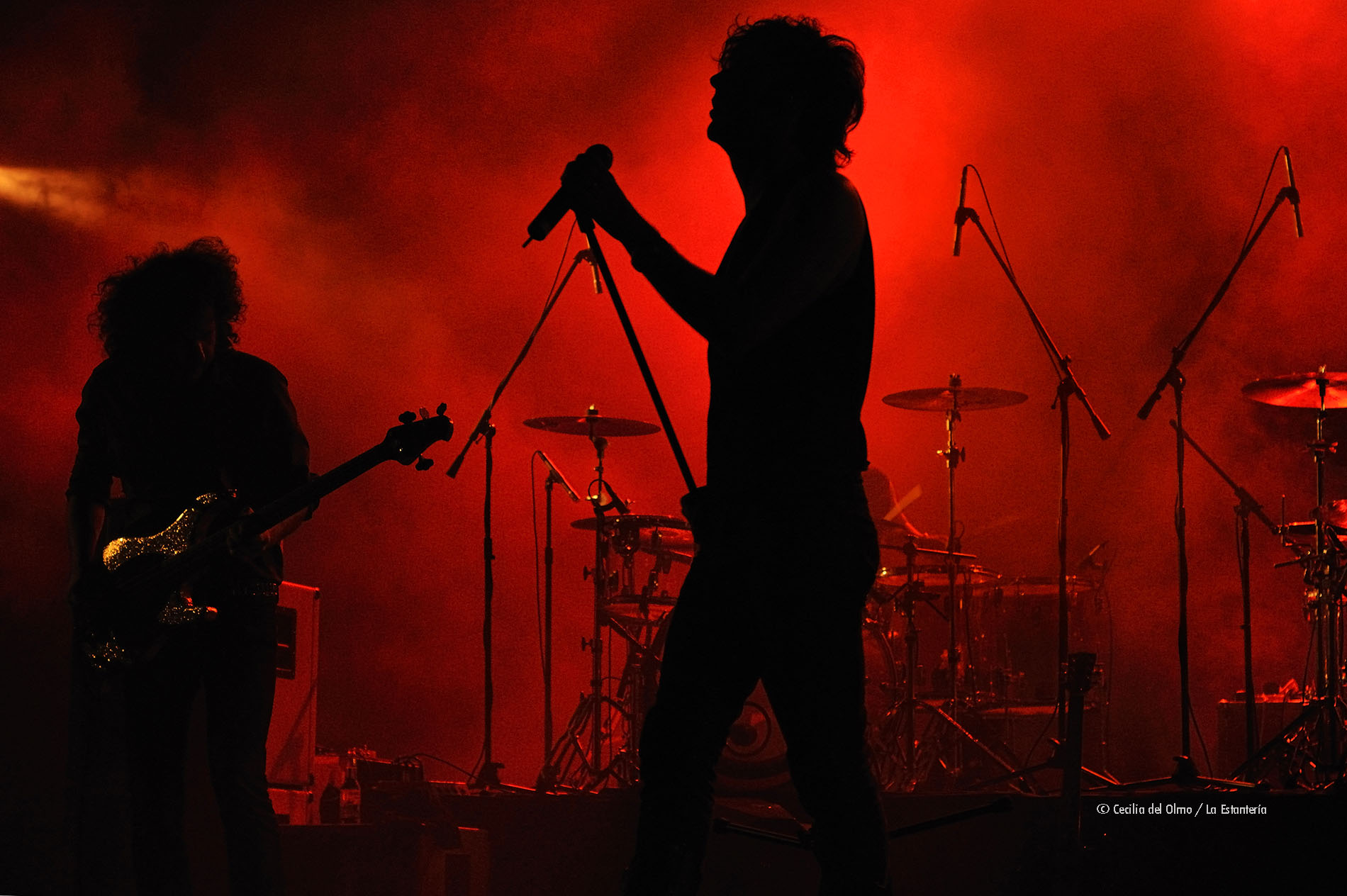 fotografía foto conciertos musical musica forum mundo imperial acapulco mexico la estanteria cecilia del olmo fobia